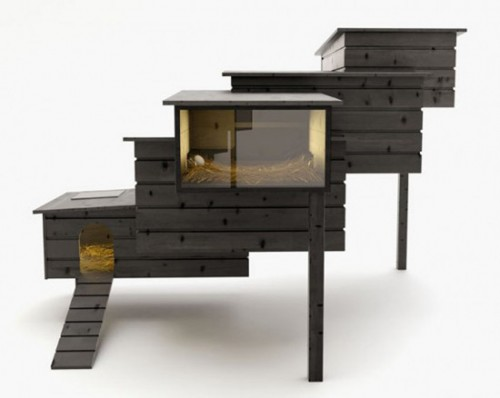 This contemporary bird house designs will give different appearance for our