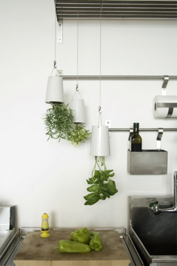 kitchen ceiling planter designs