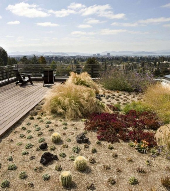 outdoor rooftop garden ideas