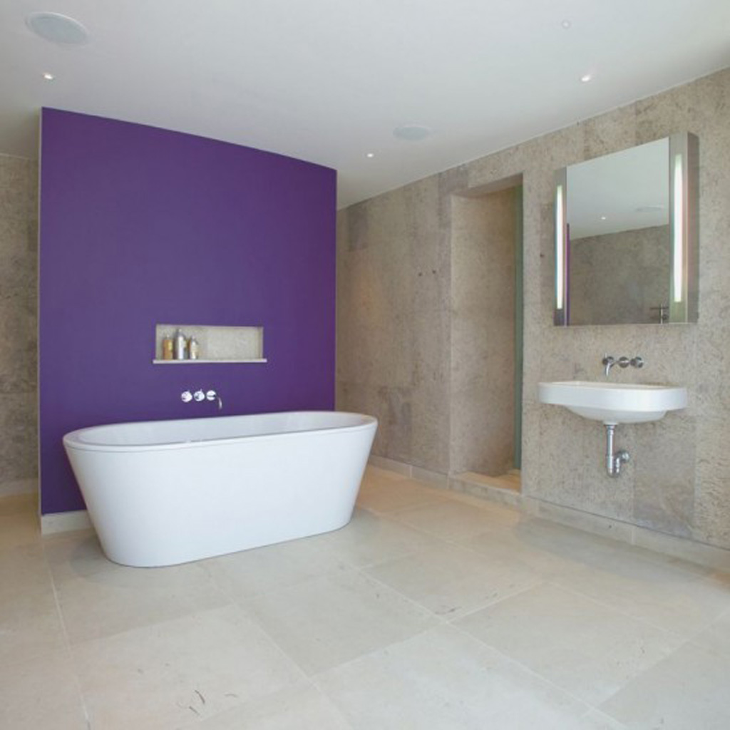 simple bathroom designs iroonie com how to make simple bathroom designs bathroom designs ideas