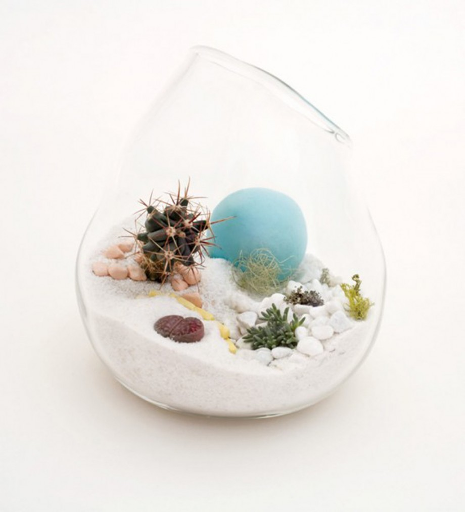 decorative glass terrarium decorations