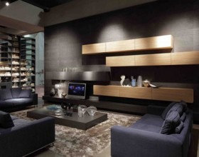 black exclusive living room decor
