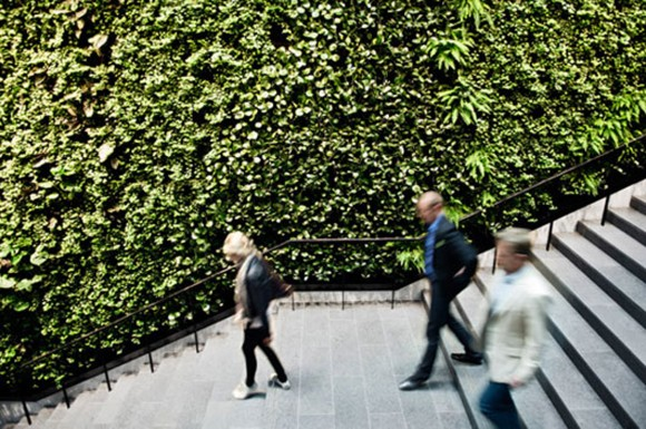 dynamic vertical garden decor