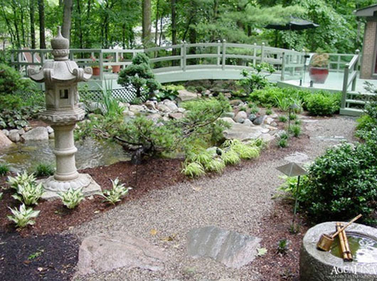 Green garden decor ideas for Backyard landscape design ideas