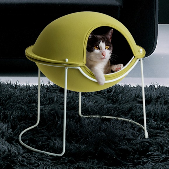 small cat house designs layouts