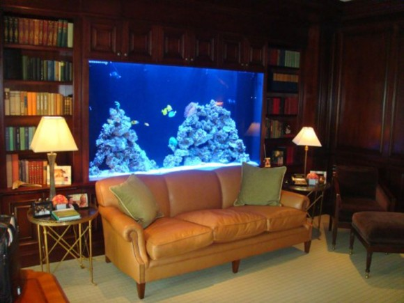 decorative aquarium designs ideas