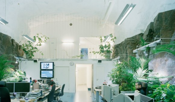 green and clean office interior decor