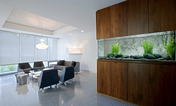 integrated aquarium wall divider layouts