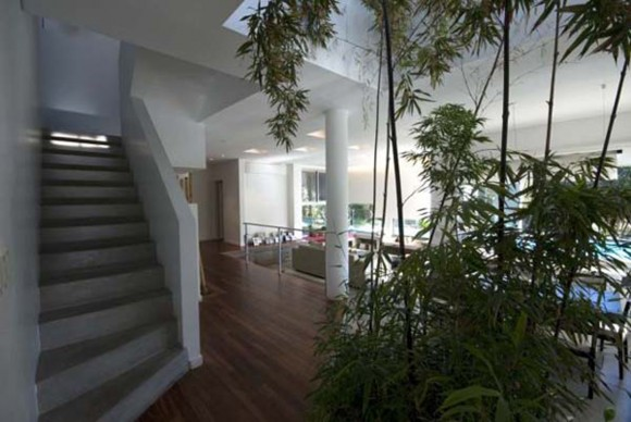 eco-green superb home interior