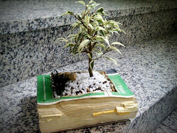 using useless book being planters