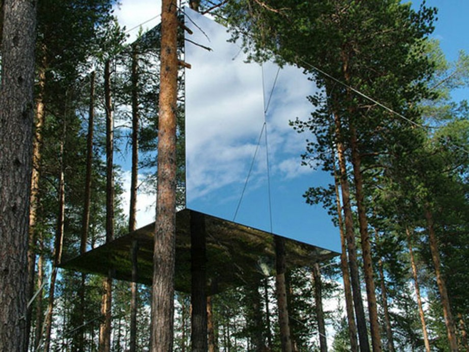 amazing tree lodge with mirror applications