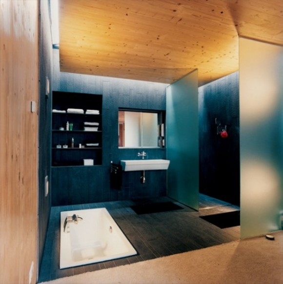 dark bathroom interior applications