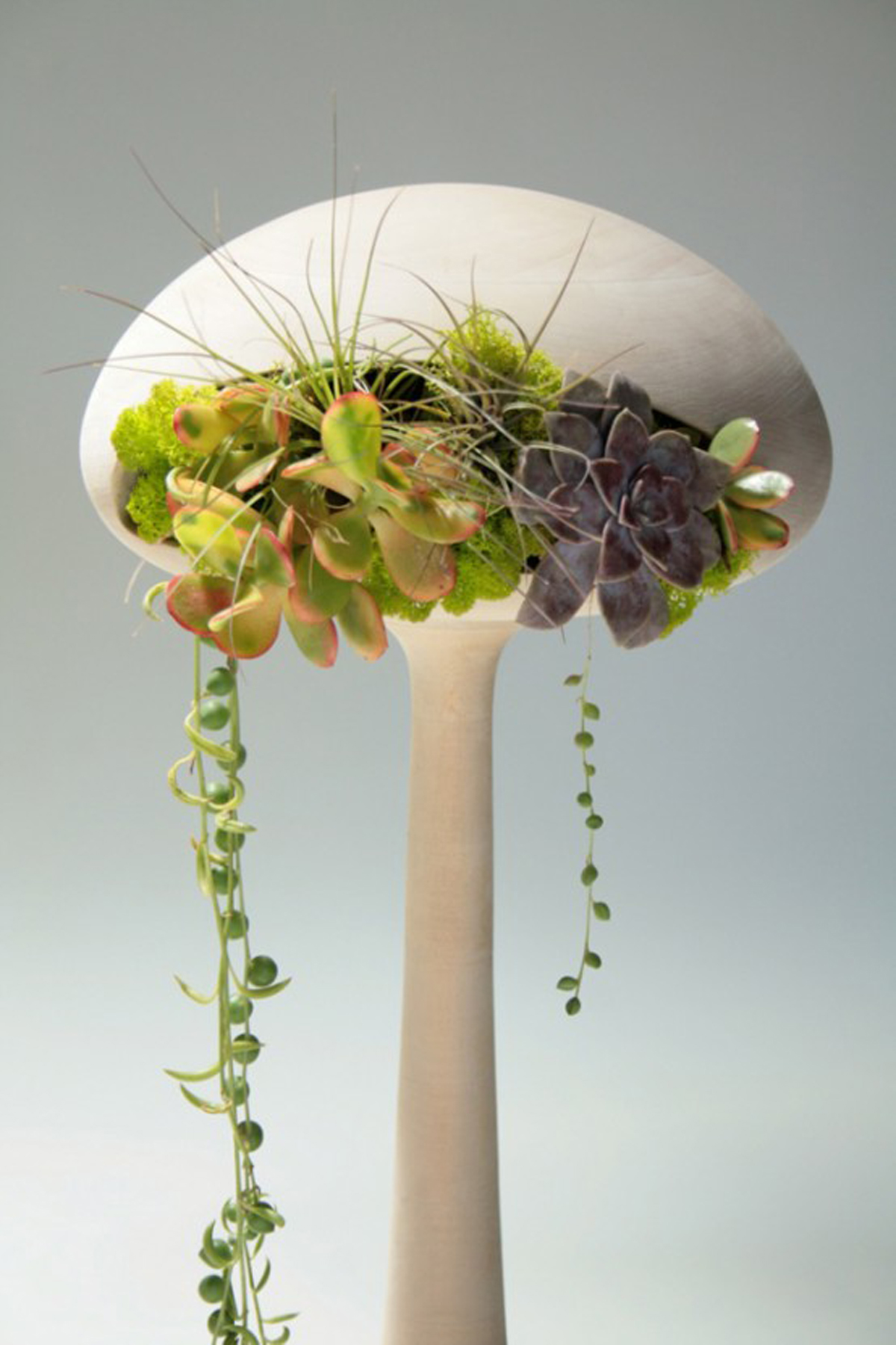 Expressive Indoor Pot and Planters Designs with Alien Look ...