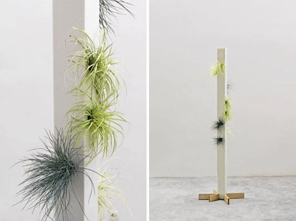 Modern house planters designs for Modern indoor plants