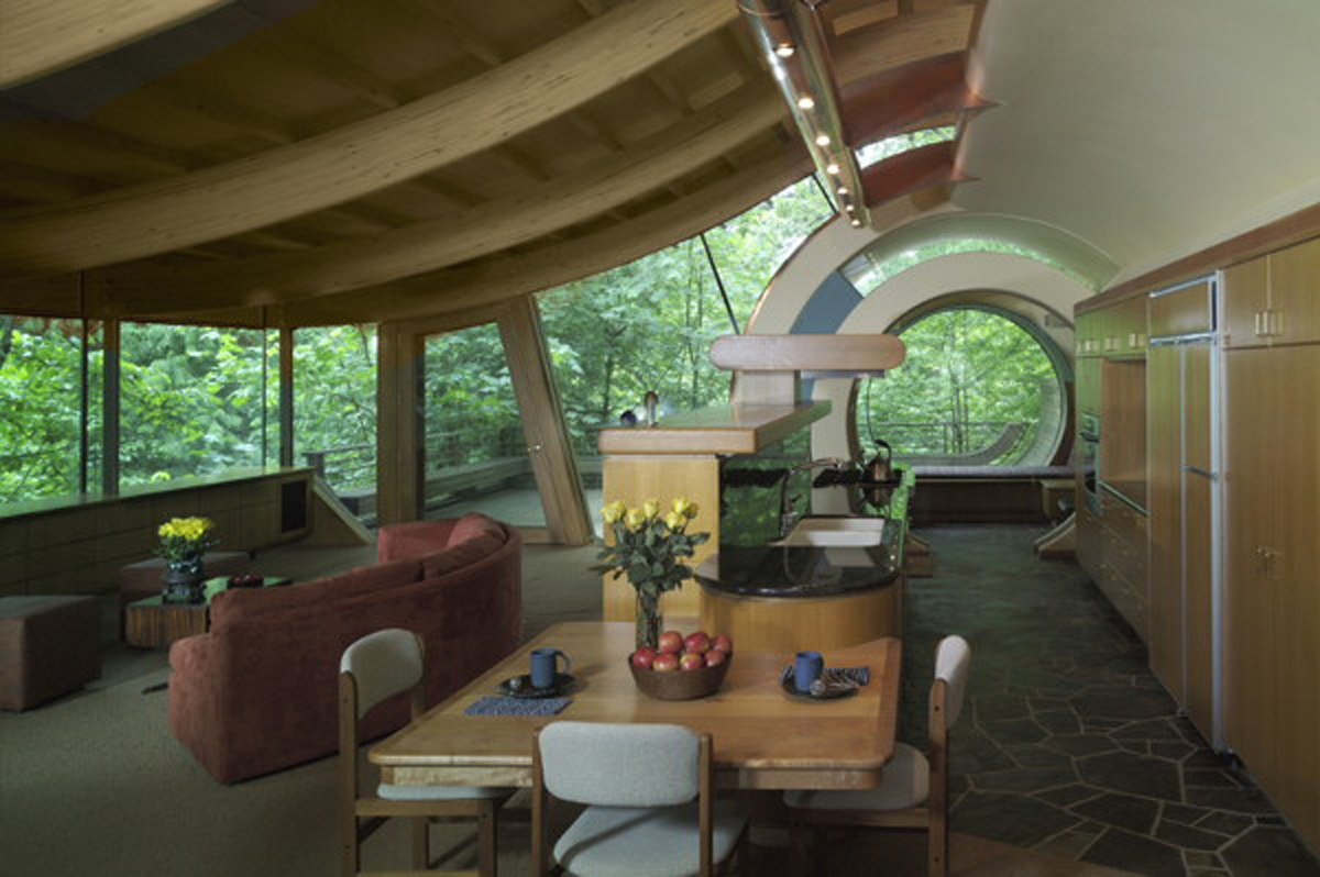 Living Wood Tree House Restricted Tree House Interior