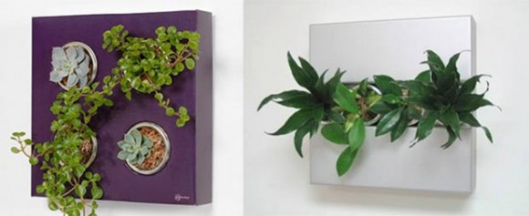 unique cube wall pots ideas