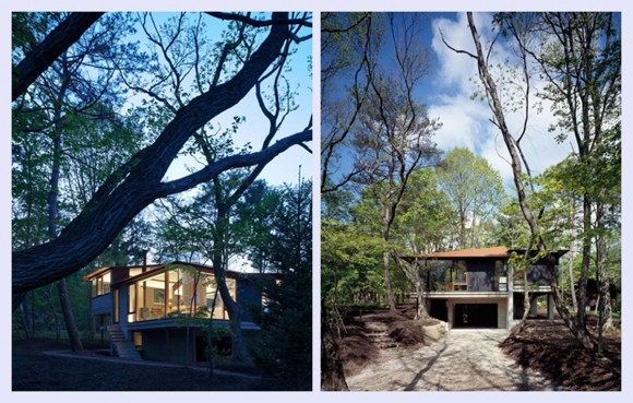 green and clean forest home exterior