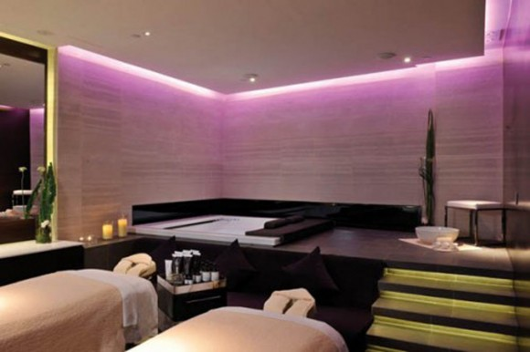 purple interior landscaping ideas