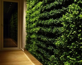 green wall gardening system