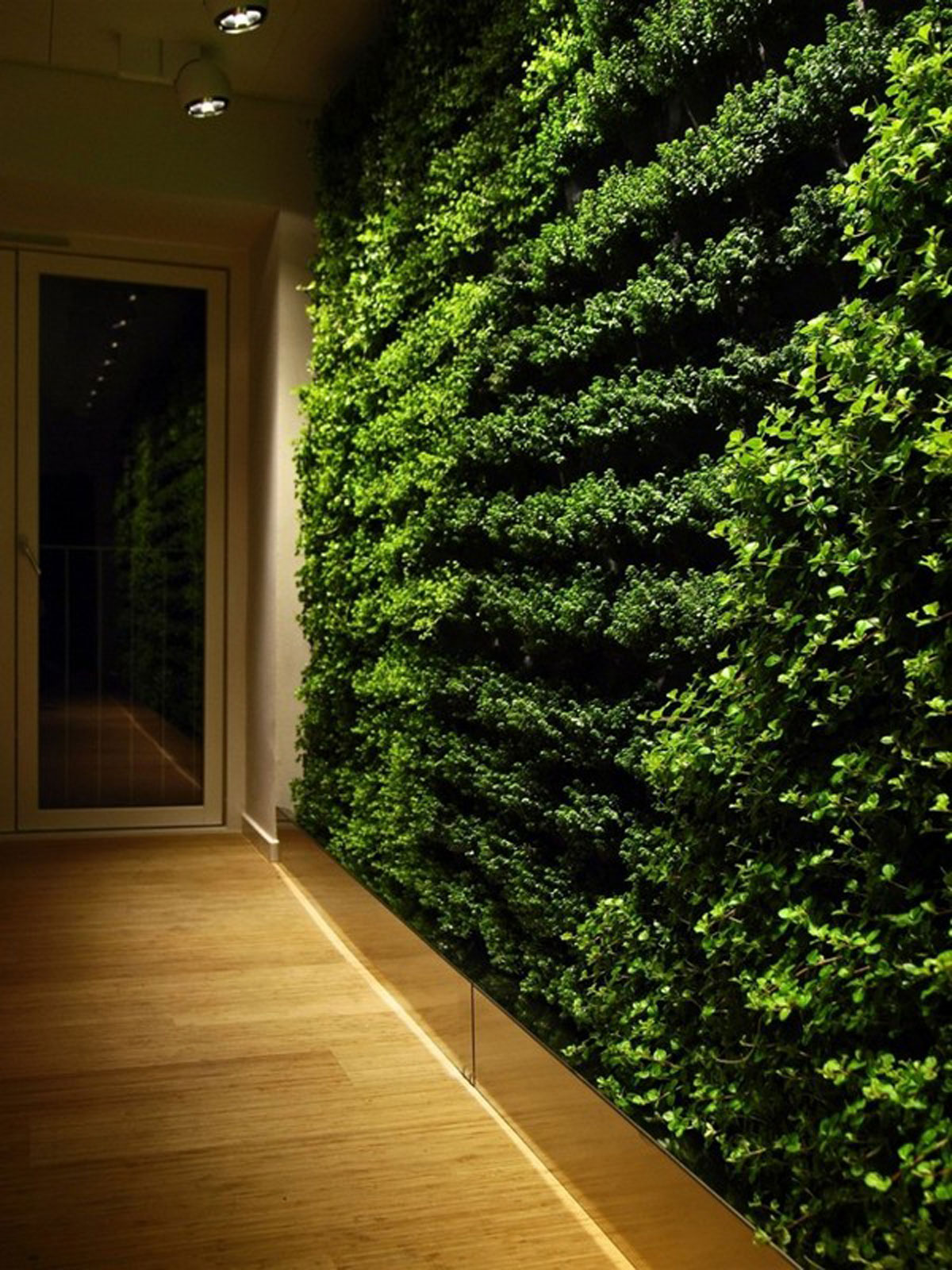 Green wall gardening system for Wall garden system