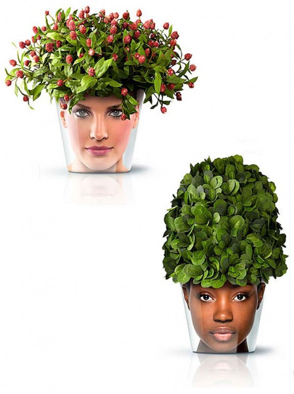 hair look pots and plants