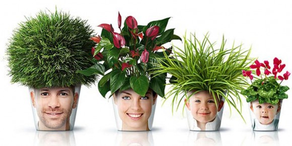 smile planters system applications