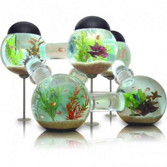bubble aquarium style plans