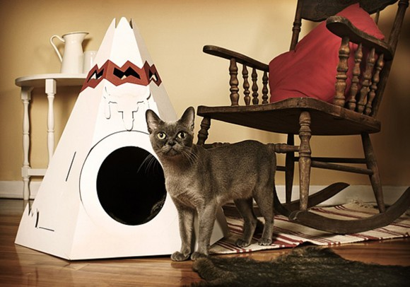 space saving cardboard cat pet