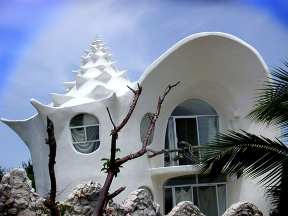 creative shell house designs