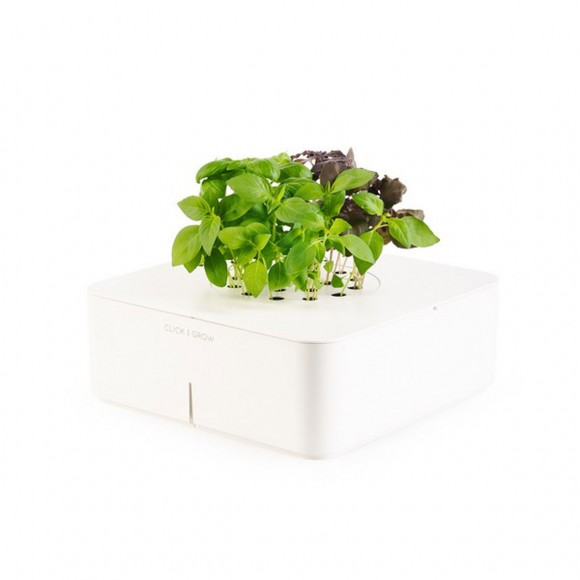 eco-friendly indoor planters garden