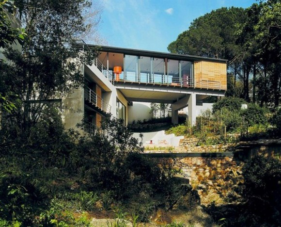 architectural modern forest house