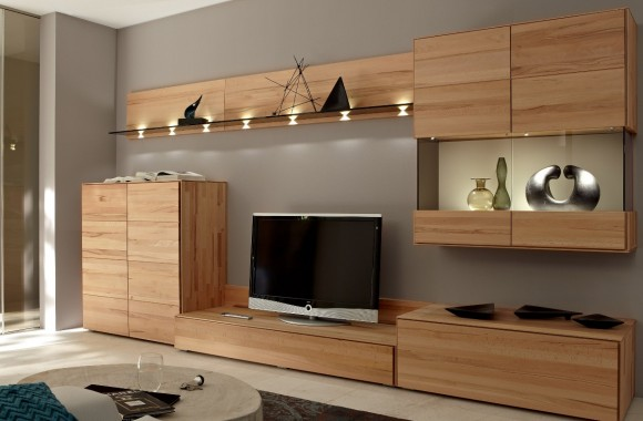 Building the Ultimate Entertainment Center(3)
