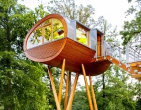 Have You Lived in a Tree House Lately(1)