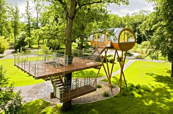 Have You Lived in a Tree House Lately(2)