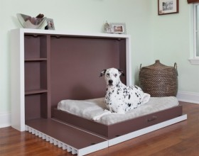 Give your Pet Cozy Comfort with Luxurious Dog Beds