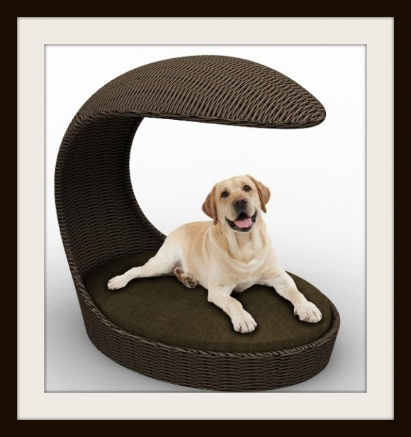 Give your Pet Cozy Comfort with Luxurious Dog Beds11