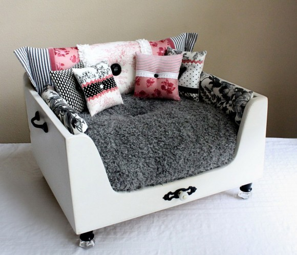 Give your Pet Cozy Comfort with Luxurious Dog Beds13