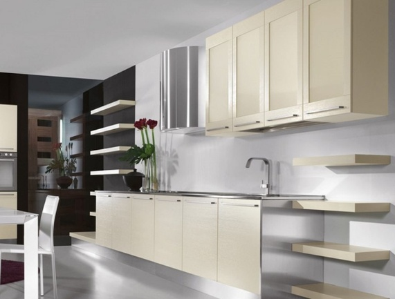 Functional and Aesthetic Kitchen Cabinet Designs12