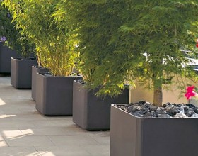 Freshen up your Home and Garden with Modern Planters1