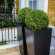 Freshen up your Home and Garden with Modern Planters2