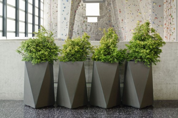 Freshen up your Home and Garden with Modern Planters7