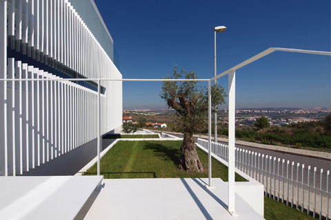 House-Paco-Arcos7