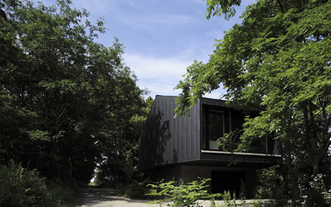 house-in-the-forest2