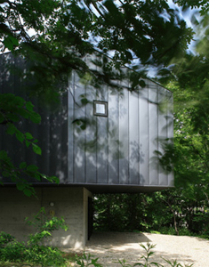 house-in-the-forest3-1