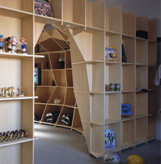 more-amazing-bookcases4-1